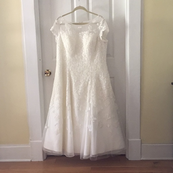 Oleg Cassini Dresses Oles Cassini Cap Sleeve Tea Length Wedding